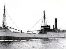 Carlotta (Rt Platamuni, Crna Gora)