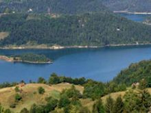 Zaovinsko jezero (Tara, Srbija)